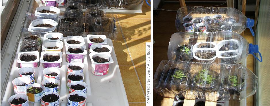 semillero con envases reciclados