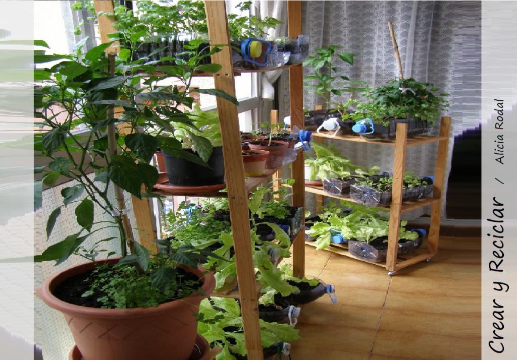 Si tienes una ventana tienes una huerta crear y reciclar - Pequeno huerto en casa ...