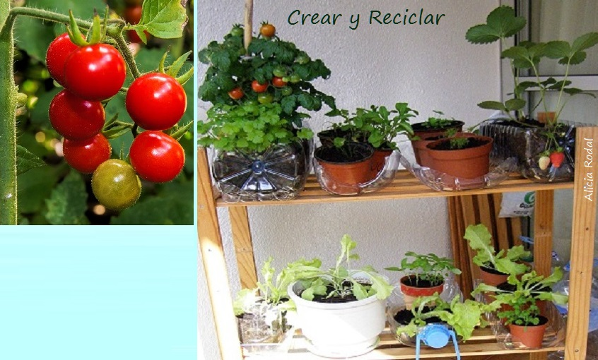 Cómo hacer una huerta vertical giratoria o huerto urbano y con envases reciclados