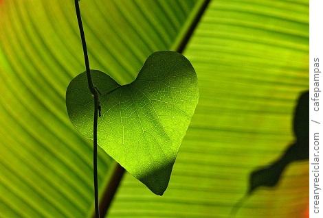 amar a la naturaleza